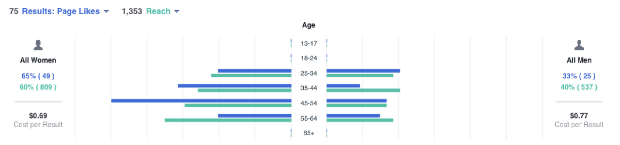 How to make a Facebook Like Campaign - Demographics